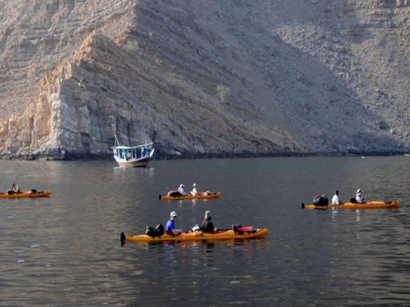 Dolphin Watching Tour Khasab